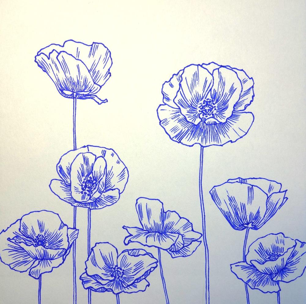 Poppy '13
