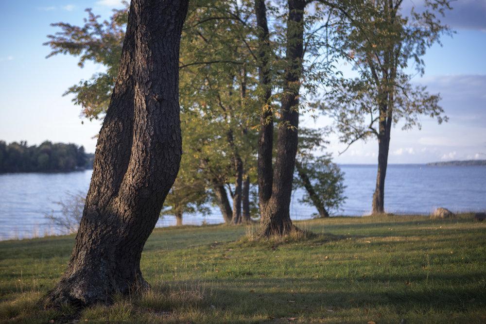 Lake Eerie