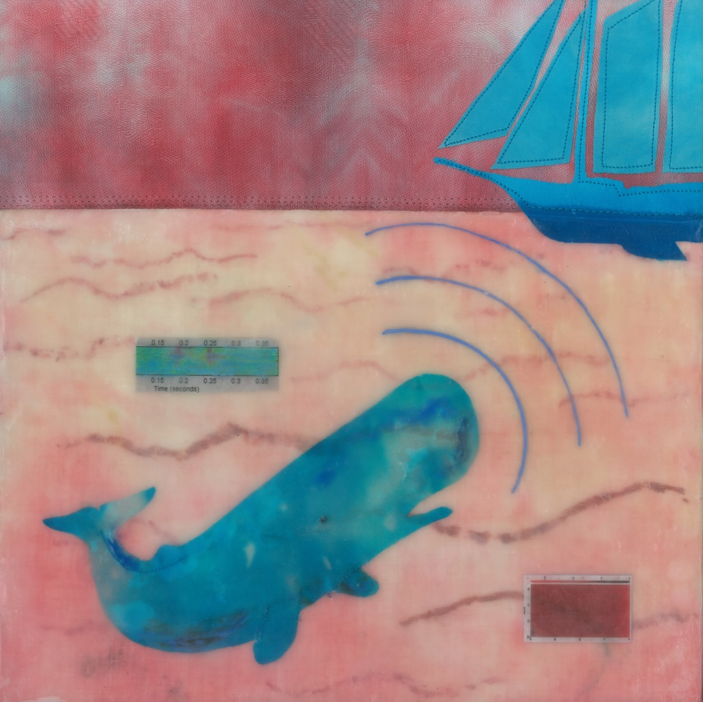 "echolocate (c) 2014. Diane Reardon. 10"" x 10"". $180. (sperm whale scanning sailboat with inset sonar recordings)"