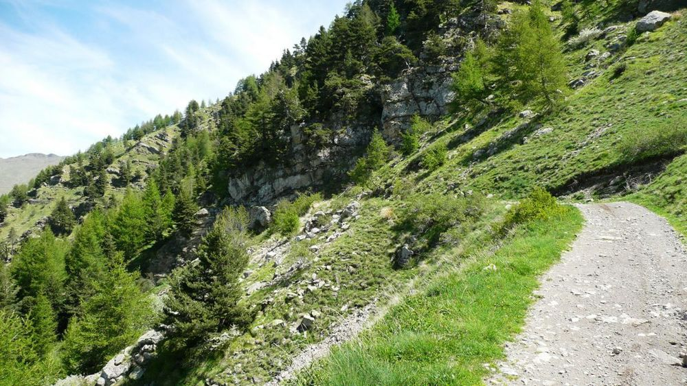 041 ligurian ridge roads - colle ardente to pas du tanarel.jpg