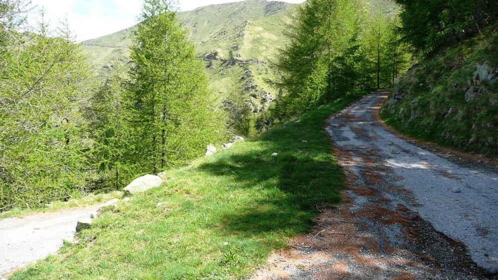 043 ligurian ridge roads - colle ardente to pas du tanarel, hairpins 1748m.jpg