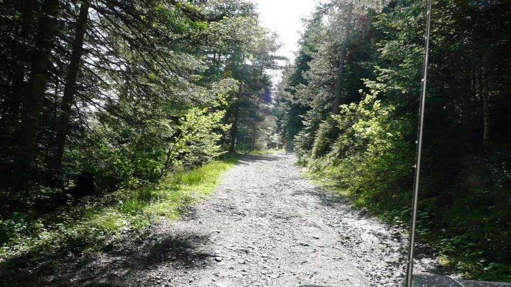 016 ligurian ridge roads - col linaire to col sanson.jpg