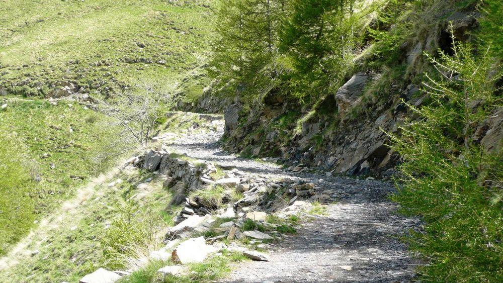 051 ligurian ridge roads - colle ardente to pas du tanarel.jpg