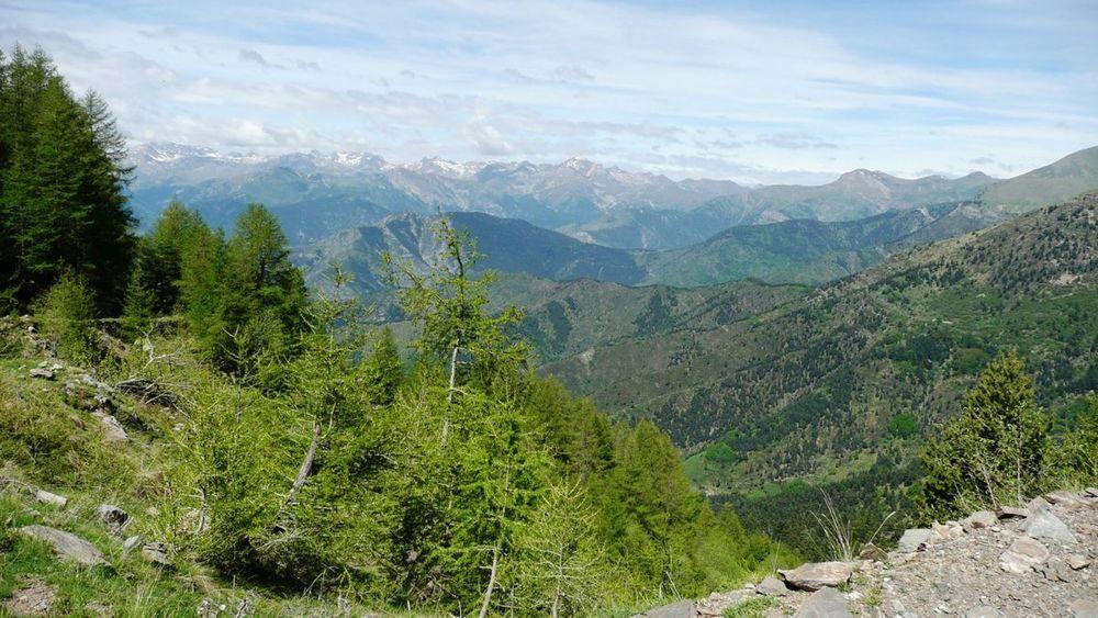 044 ligurian ridge roads - colle ardente to pas du tanarel.jpg