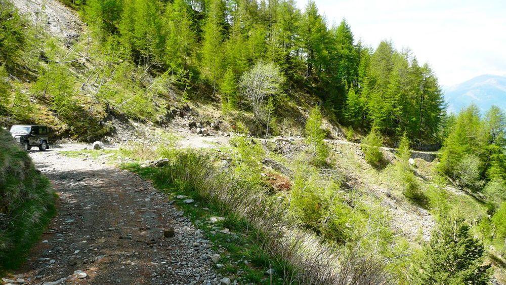 045 ligurian ridge roads - colle ardente to pas du tanarel.jpg
