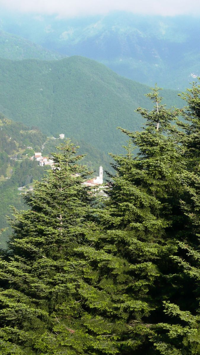 126 ligurian ridge roads - passo della guardia to triora.jpg