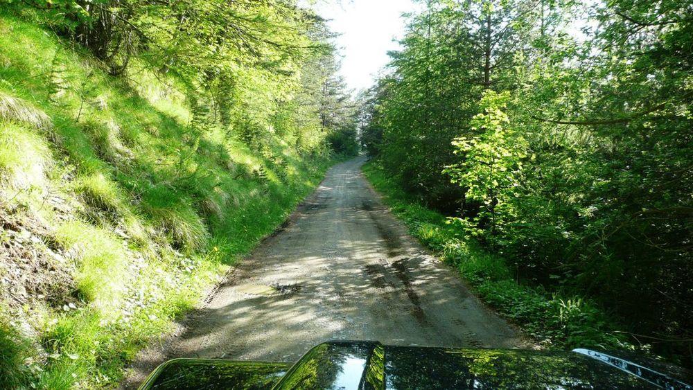 111 ligurian ridge roads - passo della guardia to triora.jpg
