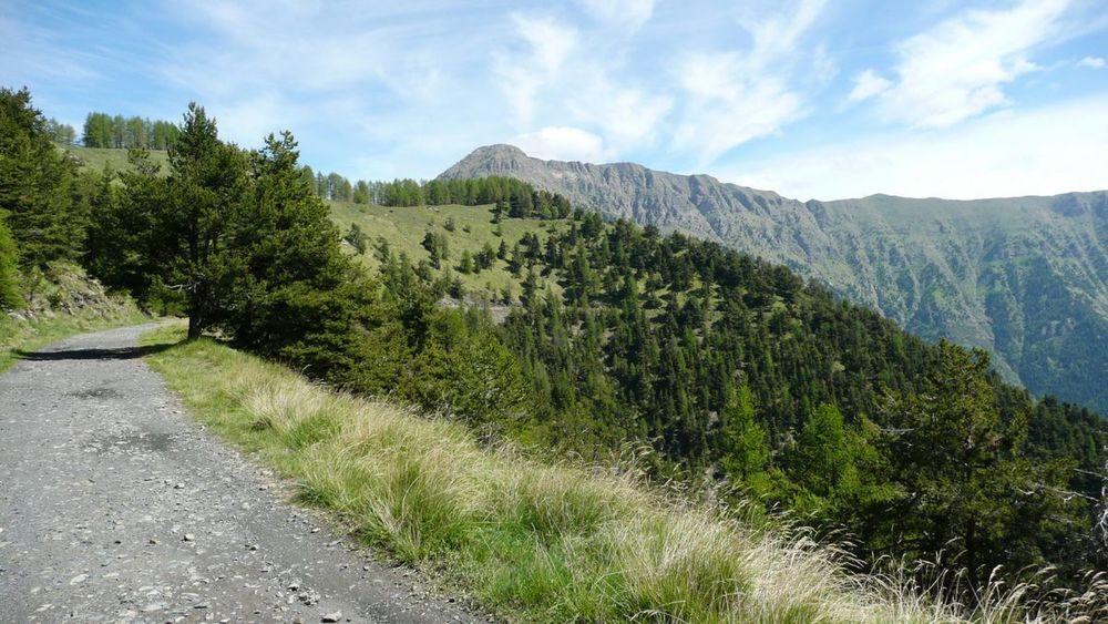 032 ligurian ridge roads - col sanson to colle ardente.jpg