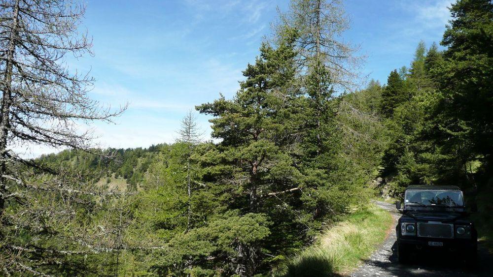 031 ligurian ridge roads - col sanson to colle ardente.jpg