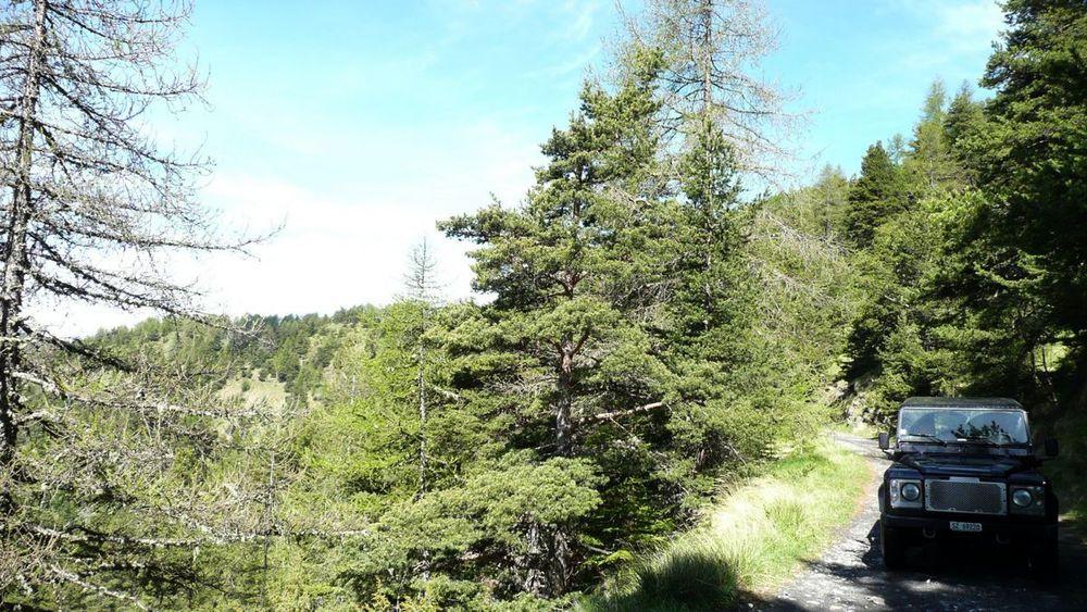 030 ligurian ridge roads - col sanson to colle ardente.jpg