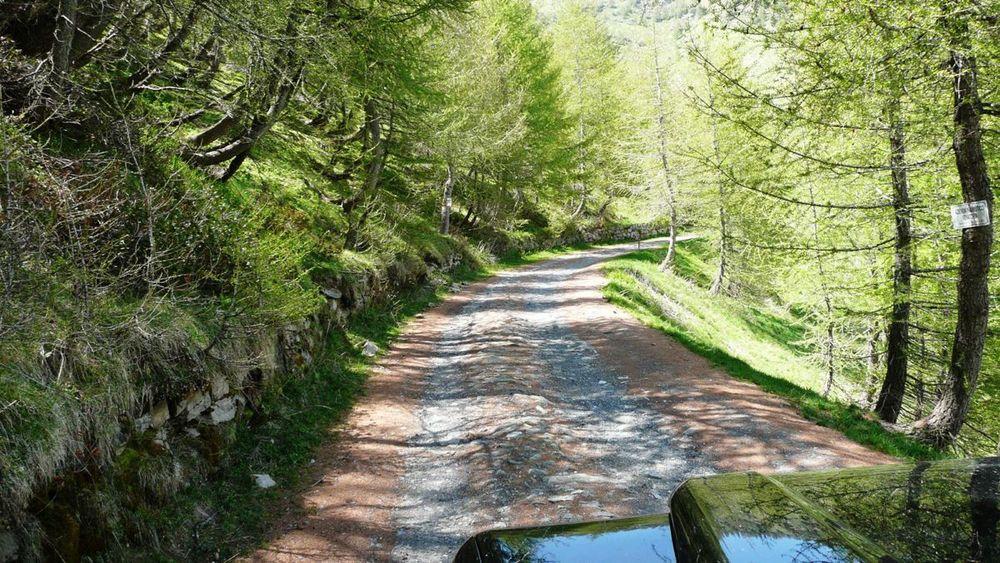 070 ligurian ridge roads - pas du tanarel to c. de la celle vielle.jpg