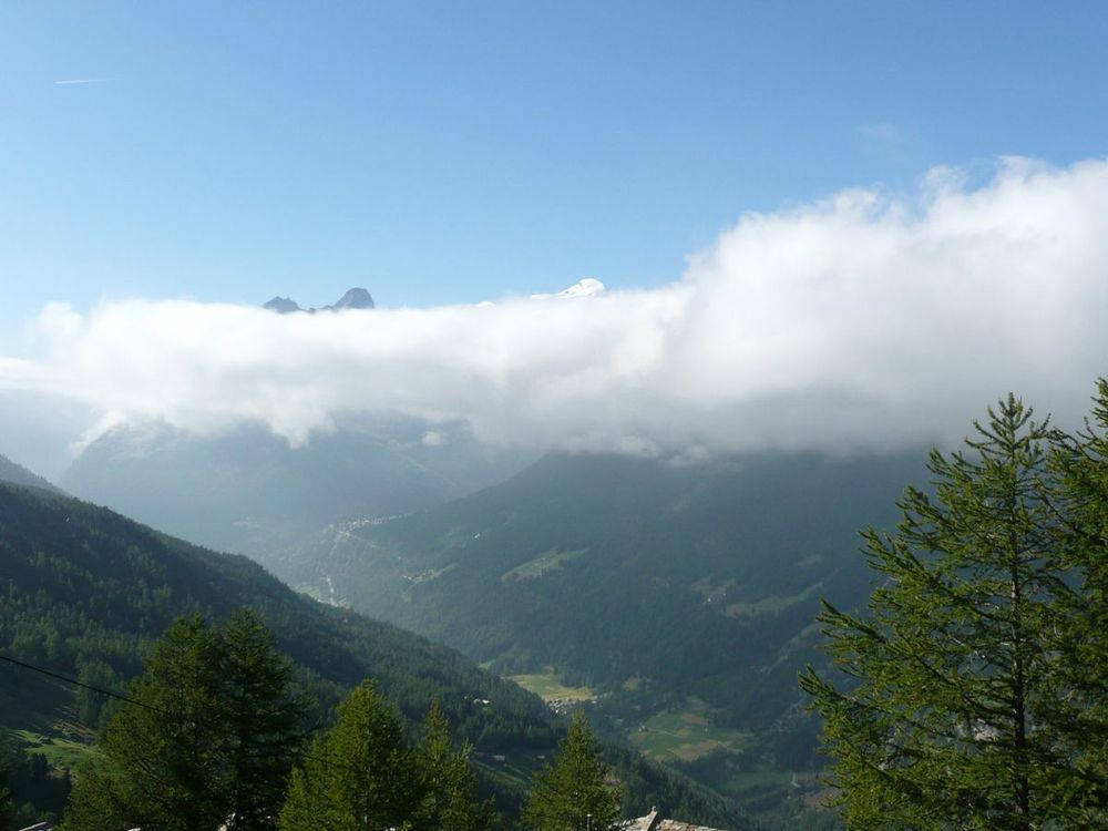 024 - heimischgarten lookin toward saas fee.jpg