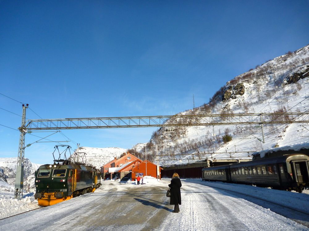Myrdal in sunshine