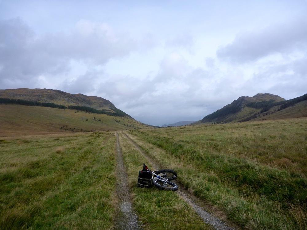 Pug resting on road along Lochan na h-Eàrba