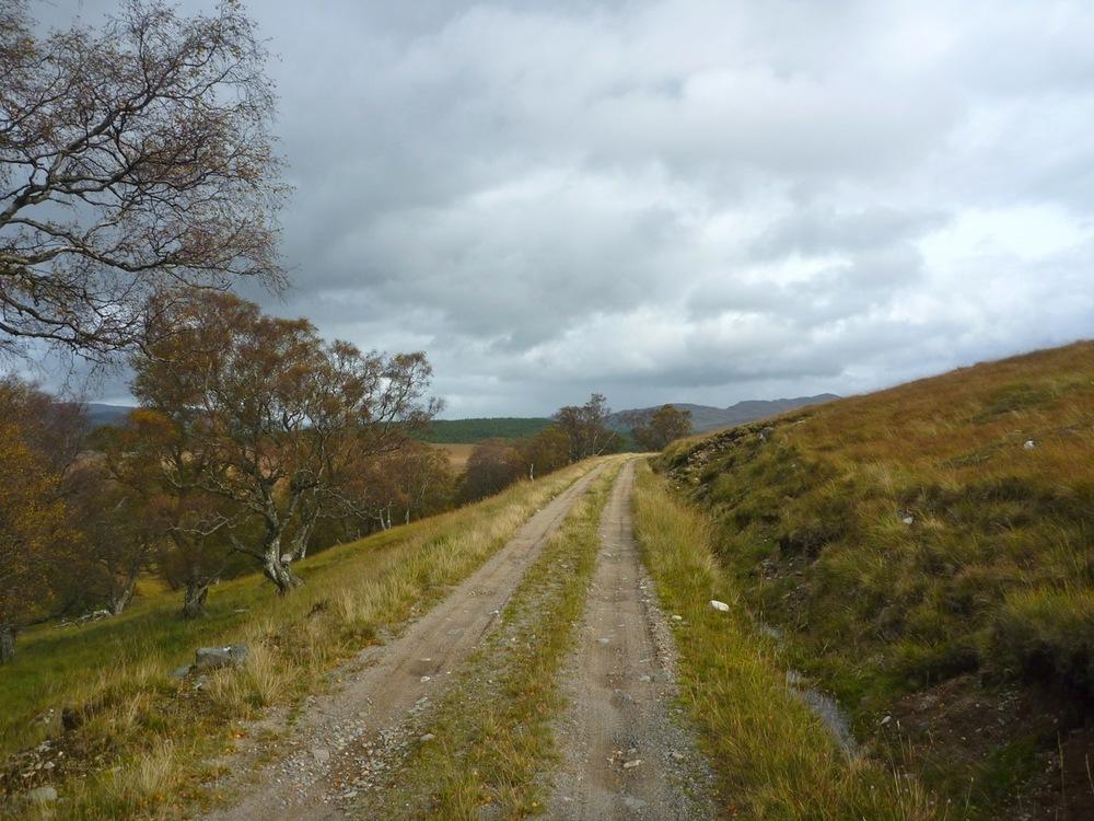 Old estate road to Glen Pattack