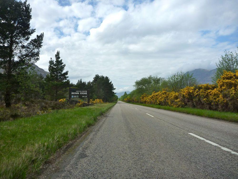 gorse-lined, deserted main road.jpg