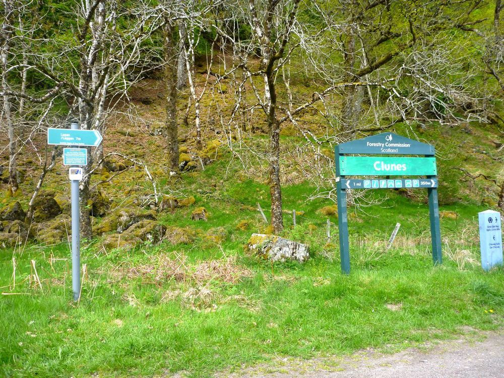 clunes; start of forest road to laggan.jpg