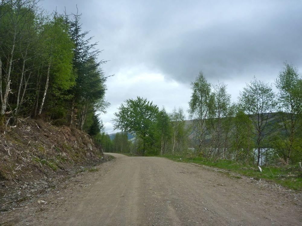 undulating forest road along loch lochy.jpg