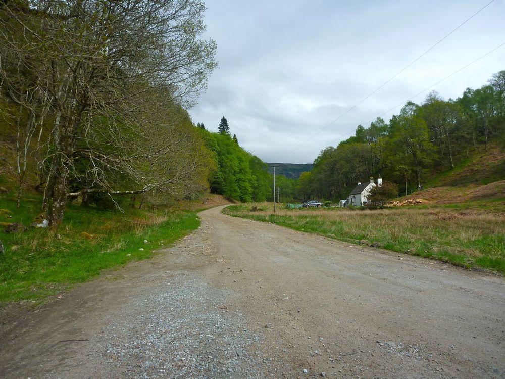 forest road start.jpg