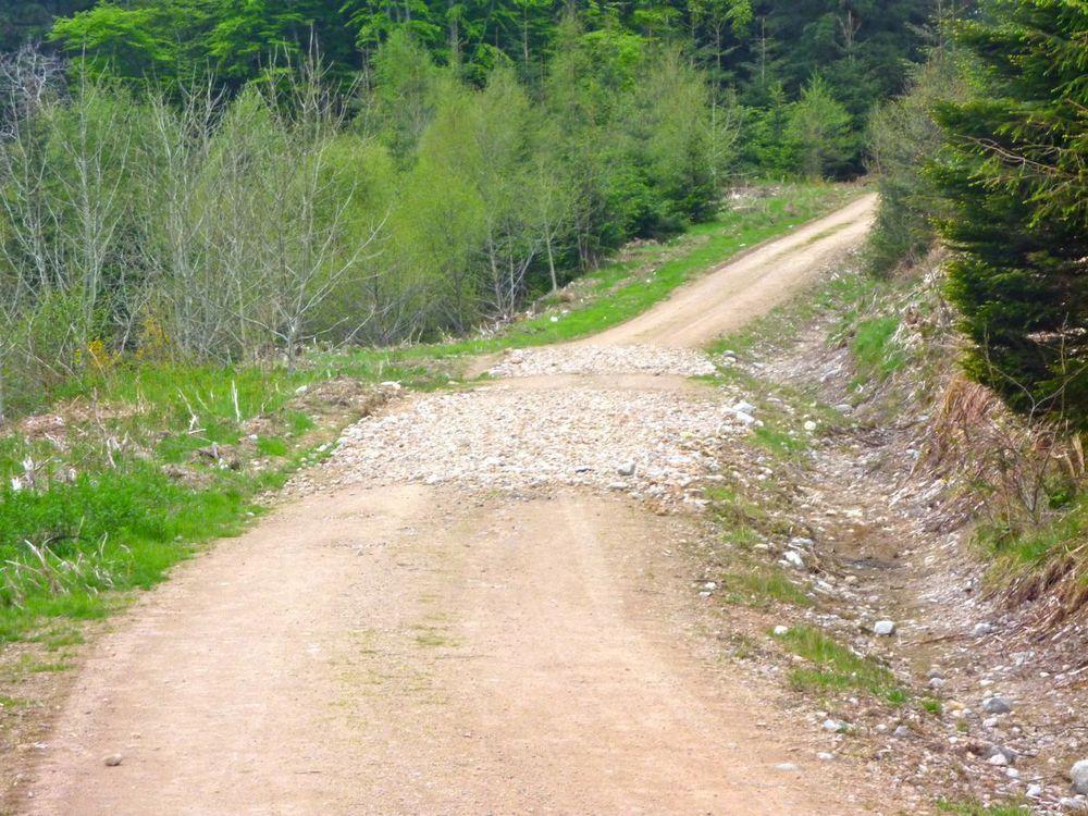 crude road repairs.jpg