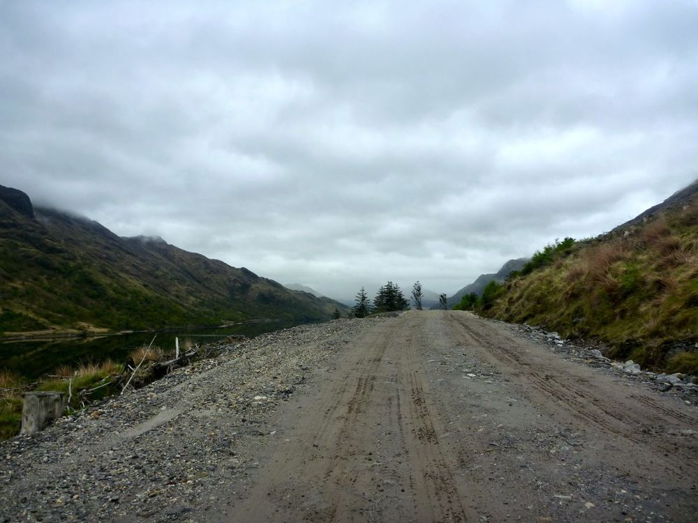 forest road heading inland.jpg