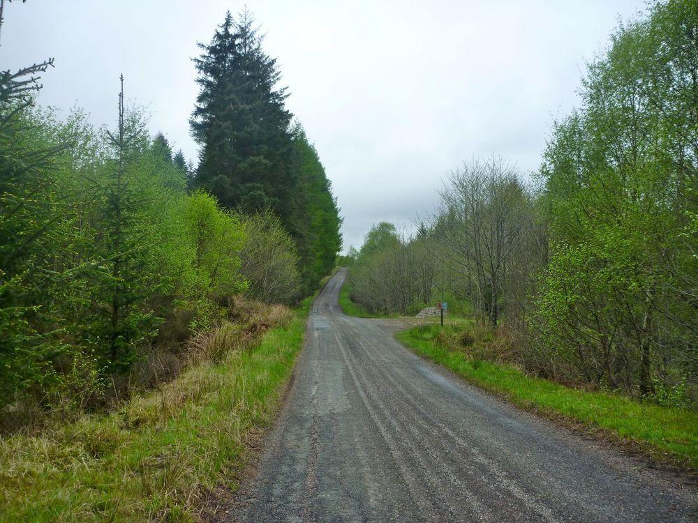 road to polloch.jpg