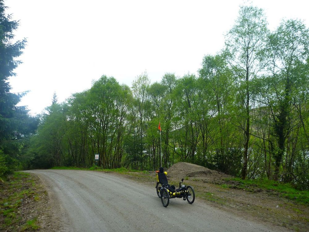 trike on forest road; many short climbs and summits.jpg