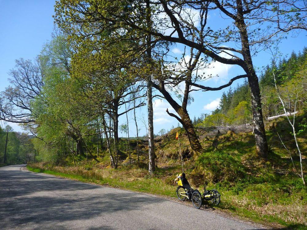 trike in woods between salen and strontian.jpg