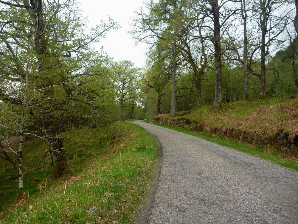 idyllic road toward tomdoun.jpg