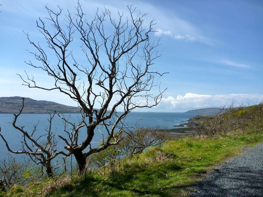 coast of loch tuath.jpg