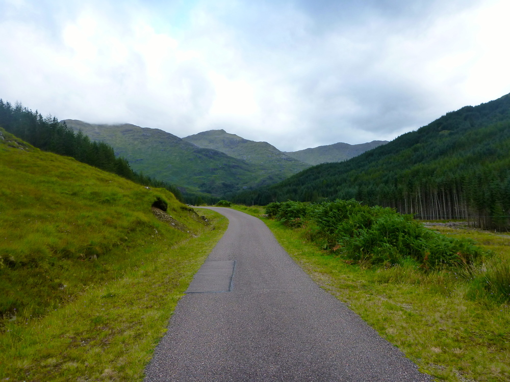 Glen Finnan: the beautifully manicured estate road leading to the lodge, which has a commanding view back down the glen. The glen veers right at the lodge.