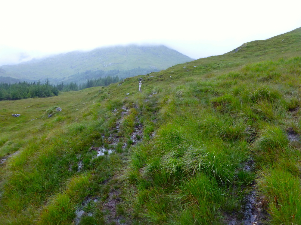 Boggy path and low cloud as I headed into Knoydart.