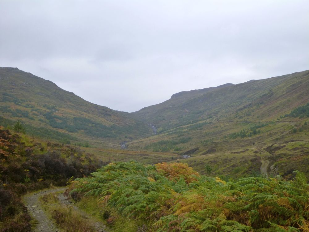 Gleann na Muice: the landrover track crosses the river then climbs up the right-hand flank, reducing to a well-made pony trail as it climbs up to the top of the glen. The glen has been planted with a variety of native trees.
