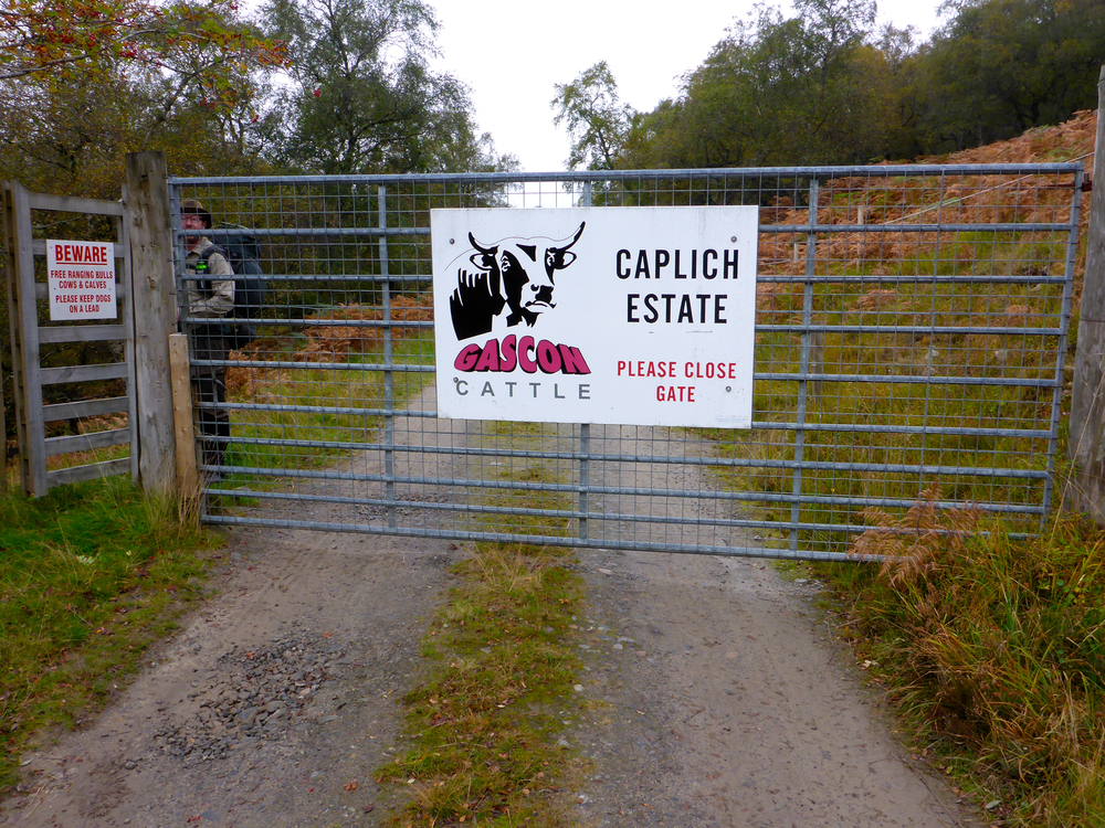 The entrance to Caplich Estate, which is home to a herd of attractive Gascon cattle imported from France.