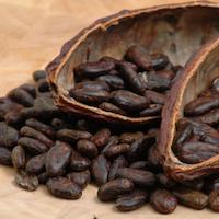 raw cacao beans.jpg