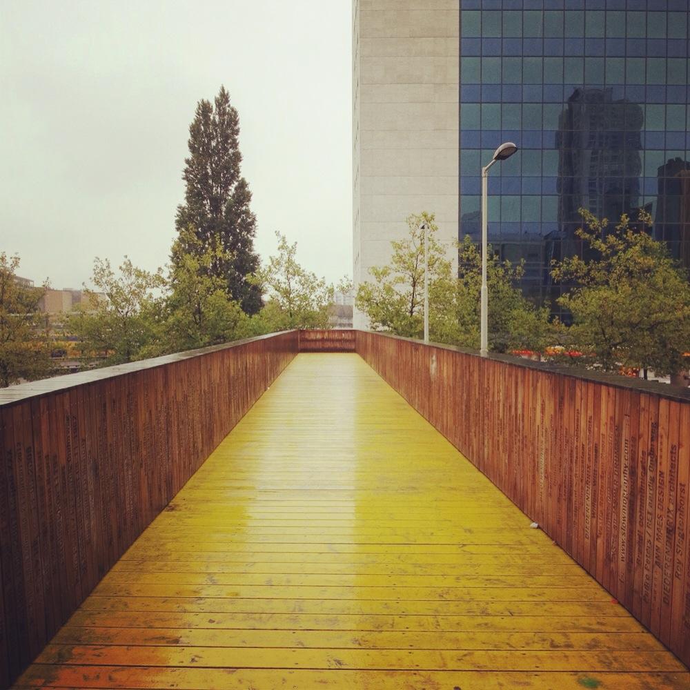 Rotterdam_bridge2.JPG