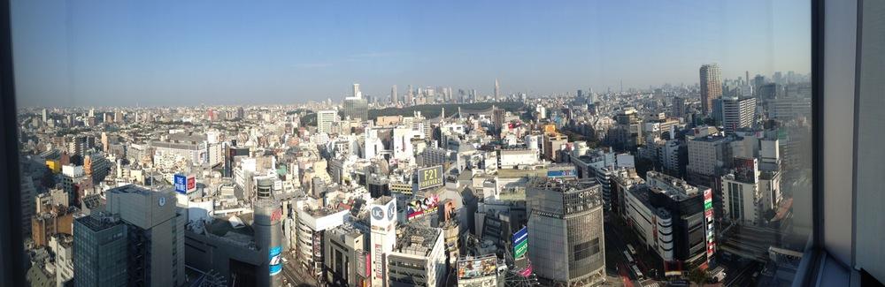 Tokyo_Aerial.JPG