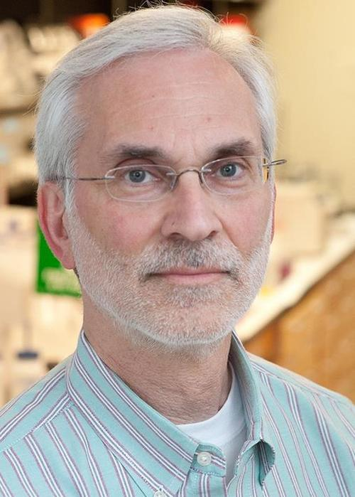 Dr. Alvin Stern