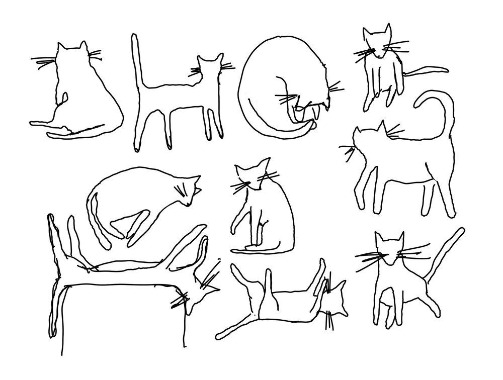 Cats_SS.jpg