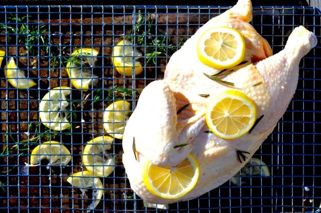 chicken rack 1.jpg
