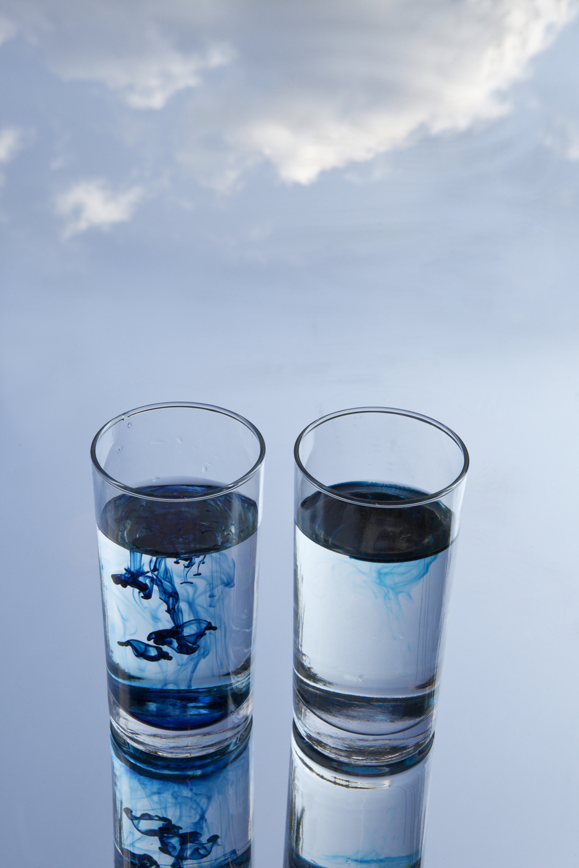Salt Water Vs. Fresh Water