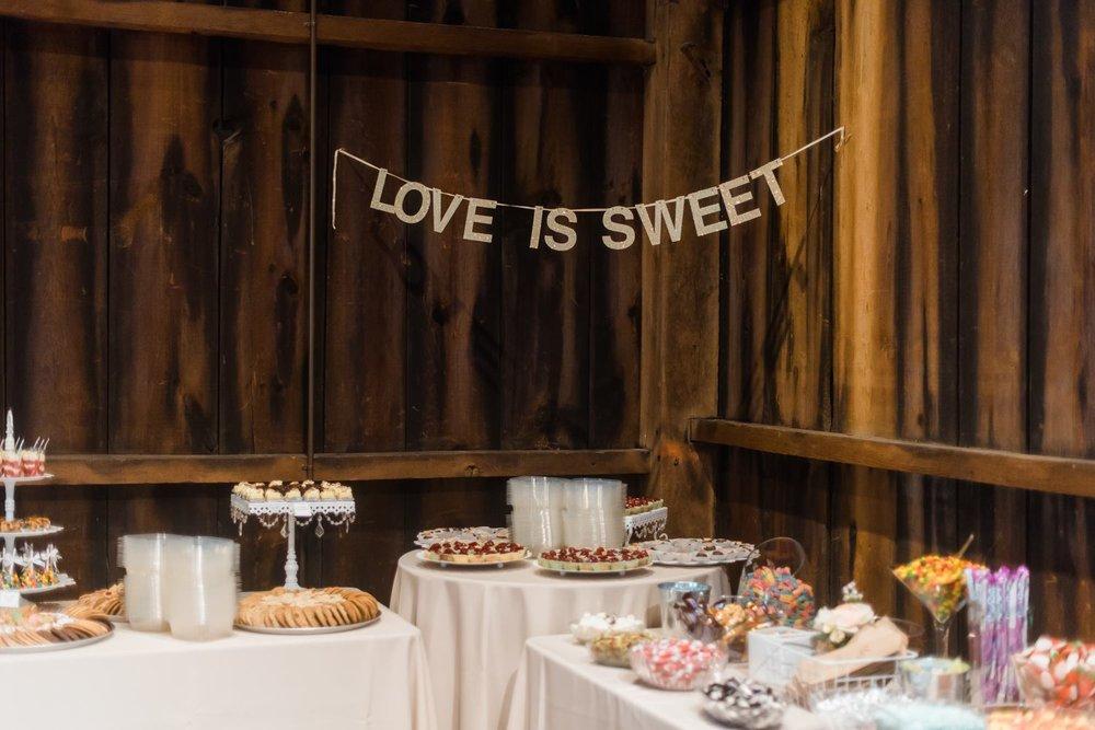 pittsburgh-botanic-garden-wedding-rustic-romantic-pennsylvania-0028.jpg