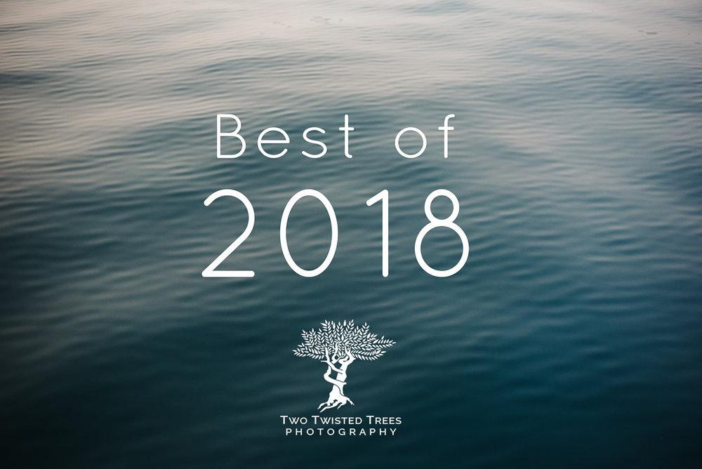 2018_0001_Best-of-2018_0001-Olivia_Policastro_2018_0212_Print_Rez.jpg
