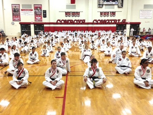 Adults, Teens and Children from Lexington, KY are getting ready for their karate Belt Test.