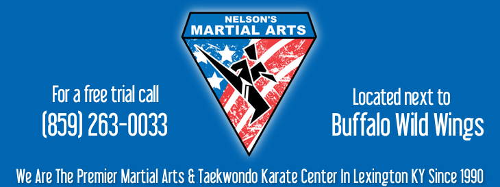 Birthday Party Nelsons Martial Arts Self Defense And Taekwondo Karate In Lexington KY