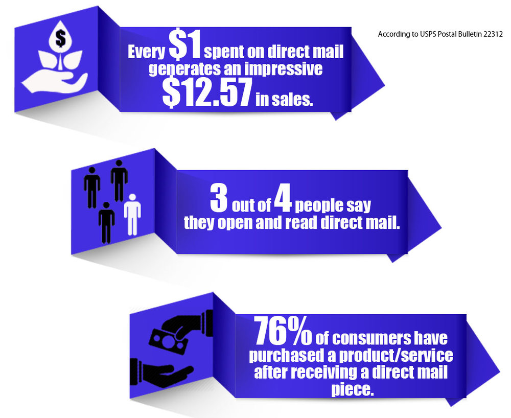 infographic mailer.png