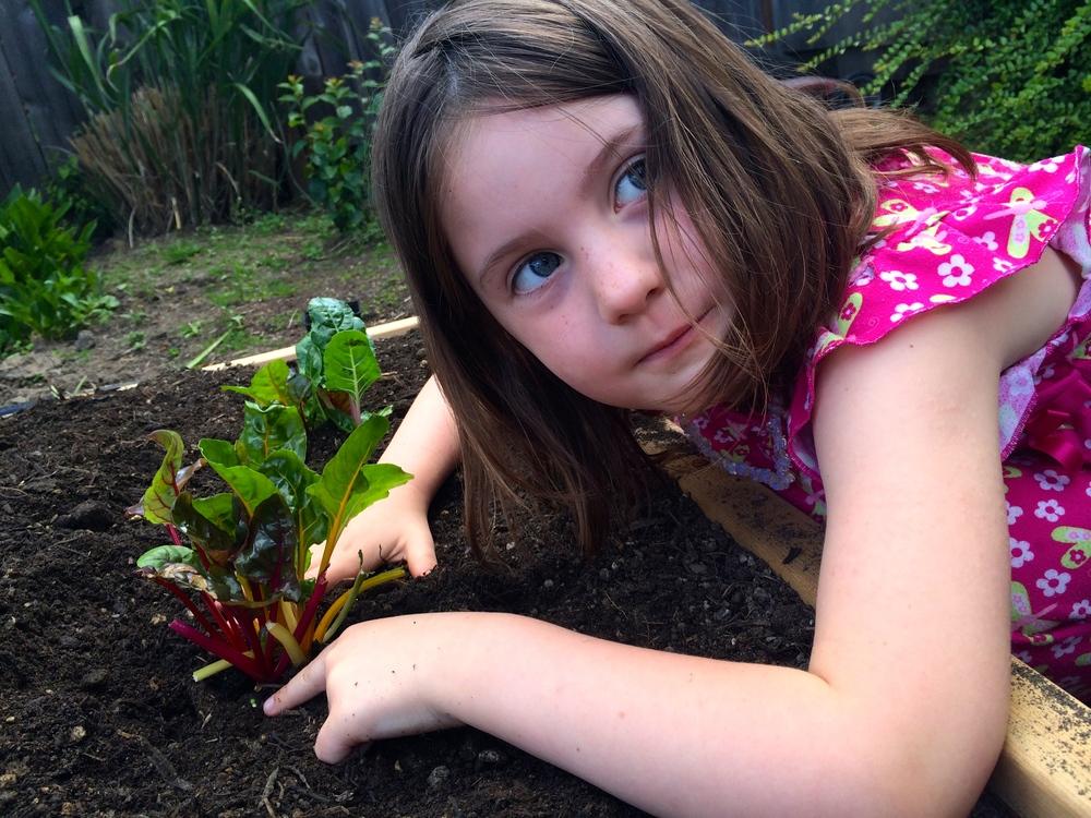 A proud little gardener