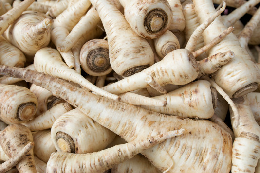 Parsnips are one of the unique treats of a winter garden.   Cobham  pictured here, is one of my favorite varieties.