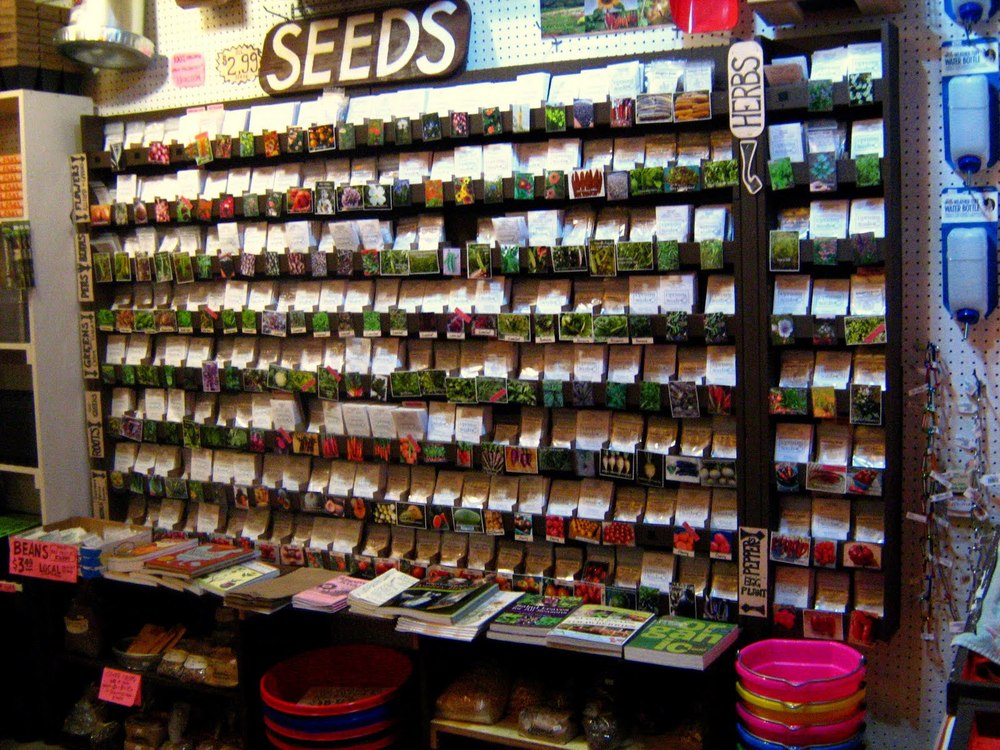 The beautiful organic seed display at Naomi's Organic Farm Supply, 2615 SE Schilller St.