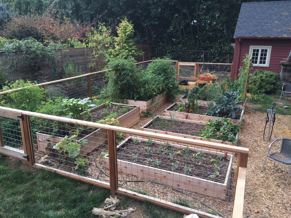 Enjoying!! 6 raised garden beds, a perennial border and out of the picture you would find Blueberries, Raspberries, and Table Grapes!